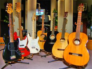 best guitars in india